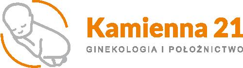 kamienna21 logo